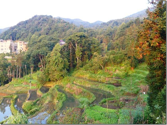 Rizières en terrasse Yuanyang (76)