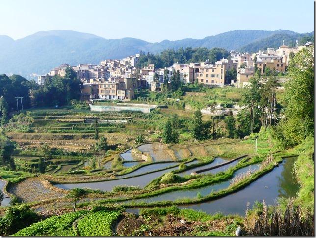 Rizières en terrasse Yuanyang (81)