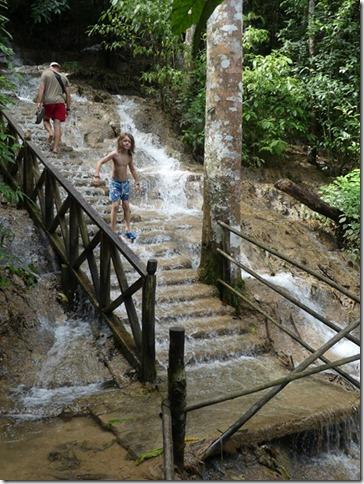 Tat Kuang Si Waterfalls (74)