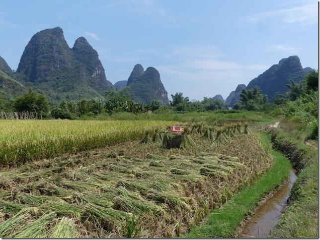 Yangshuo (122)