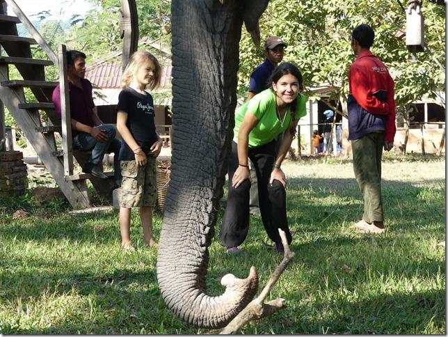 Kiat Ngong Village - éléphant (21)