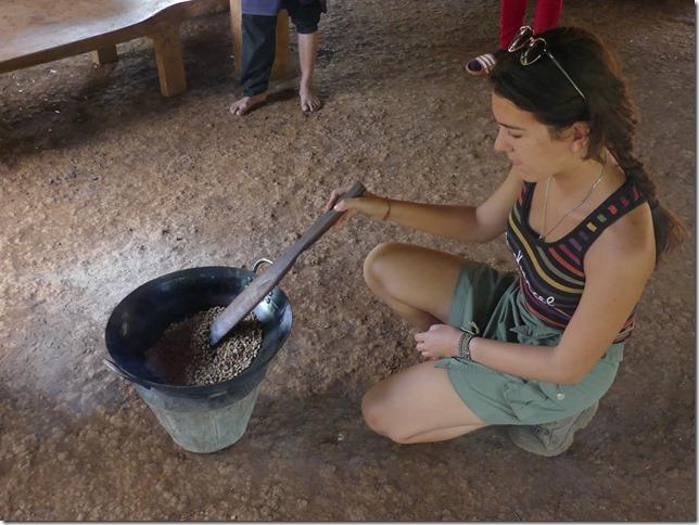 Plateau des Boloven - Kok Phoung Tai, village Katu - Plantation café Captain Hook (23)
