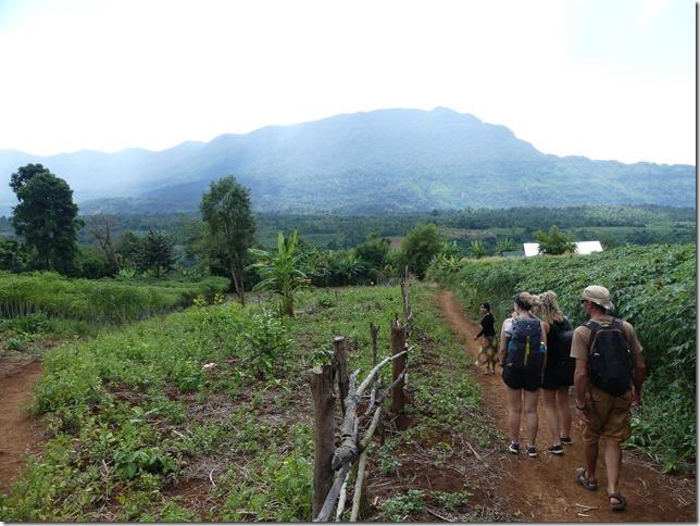 Plateau des Boloven - Kok Phoung Tai, village Katu - Plantation café Captain Hook (50)