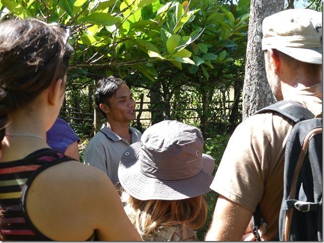 Plateau des Boloven - Kok Phoung Tai, village Katu - Plantation café Captain Hook (6)