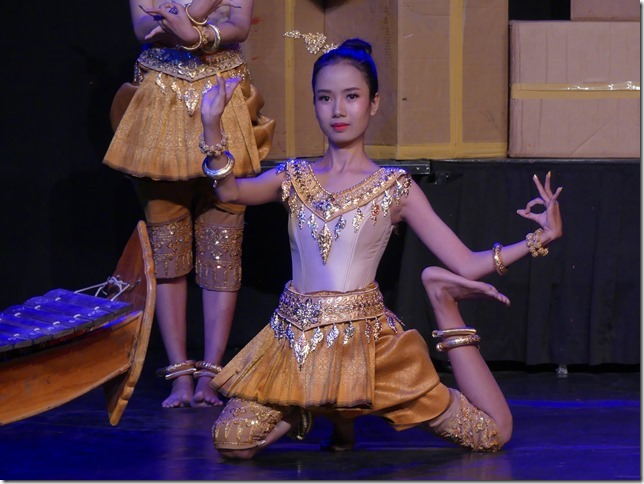 Battambang - école des arts Phare Ponleu Selpak - spectacle (13)