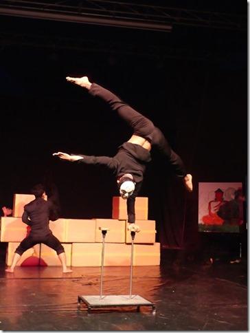 Battambang - école des arts Phare Ponleu Selpak - spectacle (23)