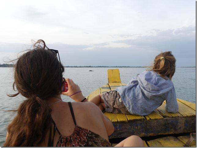 Kampi- sortie bateau dauphins (12)