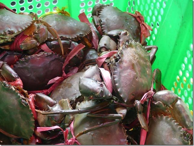 Kep- marché au crabe (17)