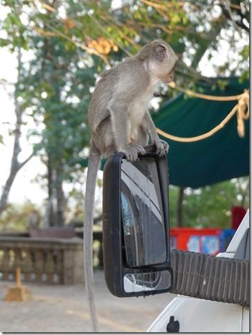Kompong Cham - Temples aux singes (10)