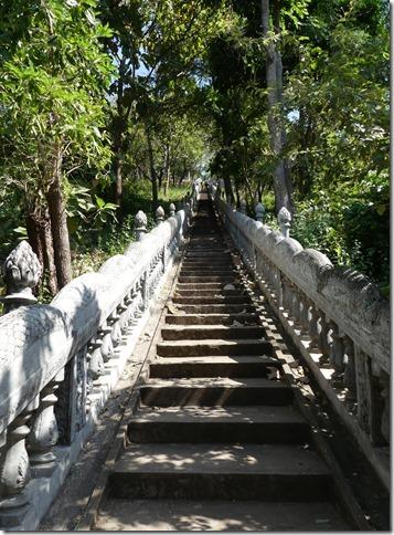Kompong Cham - Temples aux singes (75)