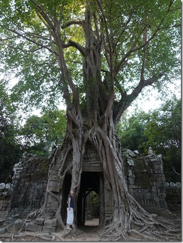 Temples d'Angkor - Prasat Ta Som (20)