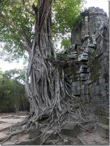 Temples d'Angkor - Prasat Ta Som (24)