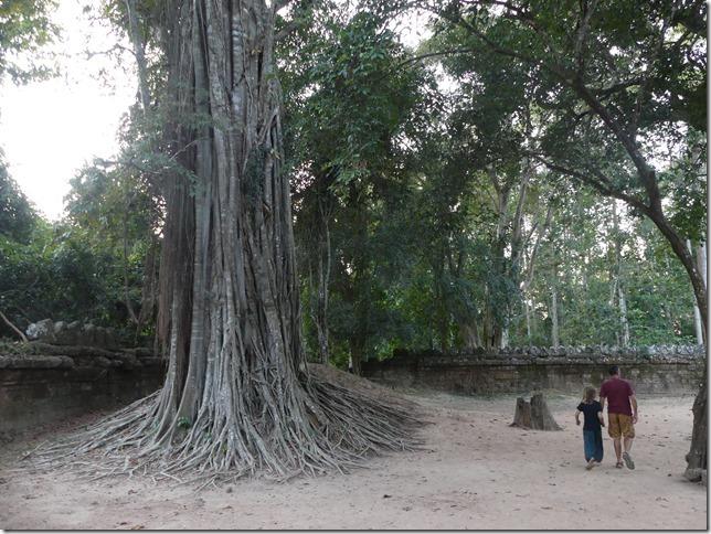 Temples d'Angkor - Prasat Ta Som (31)