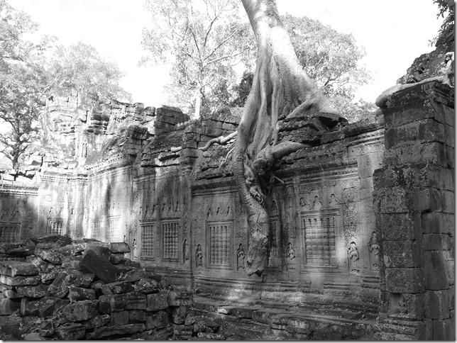 Temples d'Angkor - Preah Khan (28)