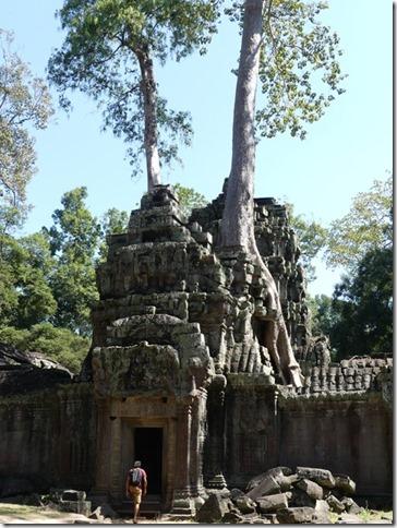 Temples d'Angkor - Ta Prohm (34)