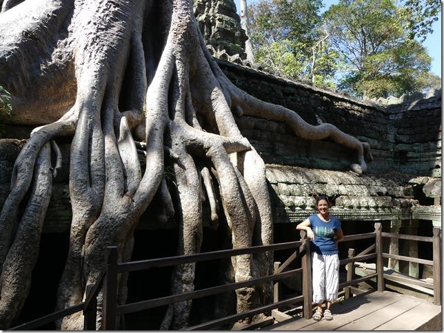 Temples d'Angkor - Ta Prohm (49)