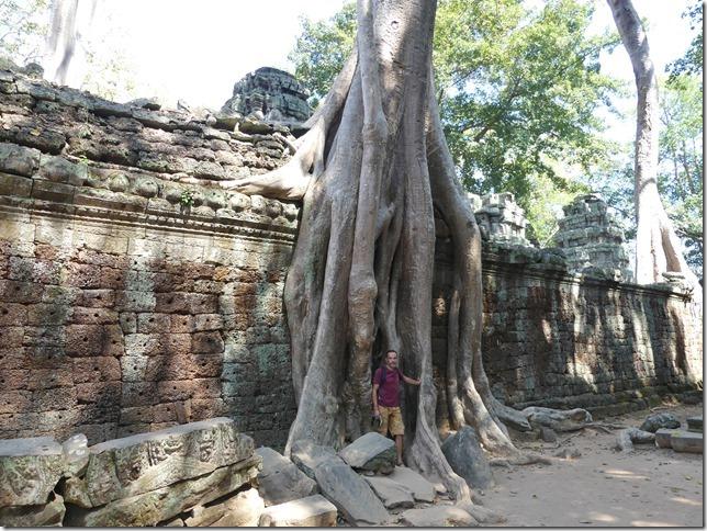 Temples d'Angkor - Ta Prohm (61)