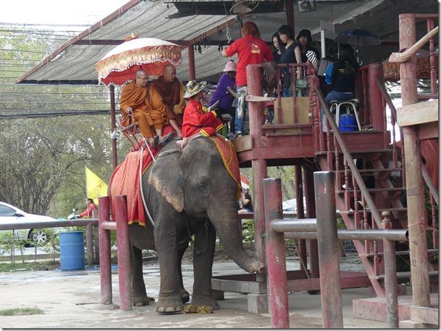 Ayutthayah - éléphants (2)