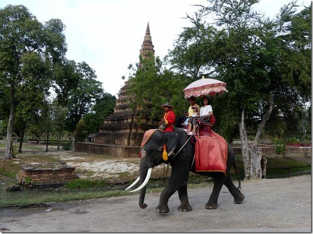 Ayutthayah - éléphants (81)