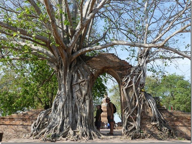 Ayutthayah - temples (5)
