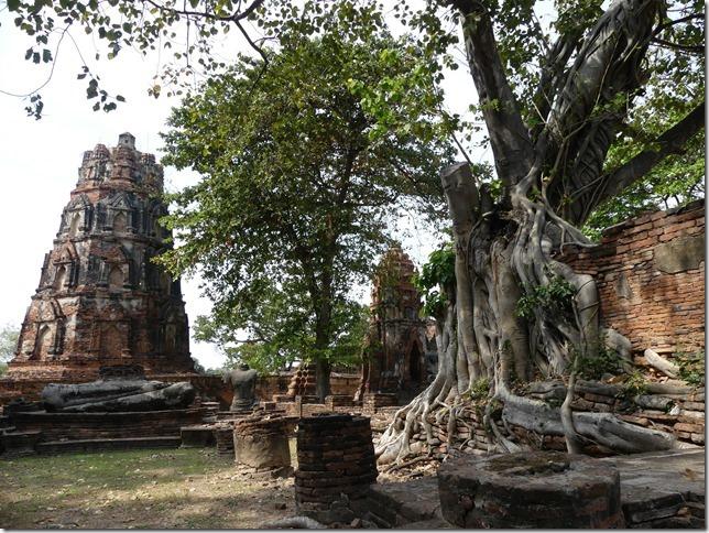 Ayutthayah - temples (69)