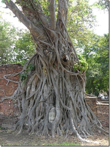 Ayutthayah - temples (76)