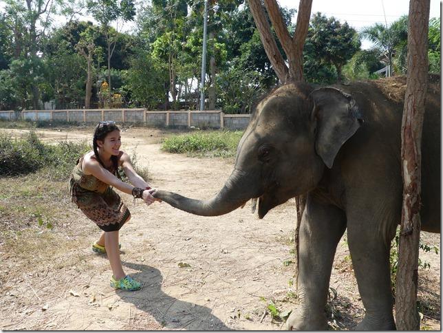 Baan Mama - Chiang Raï et Lola (15)
