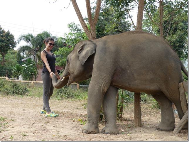 Baan Mama - Chiang Raï et Lola (3)