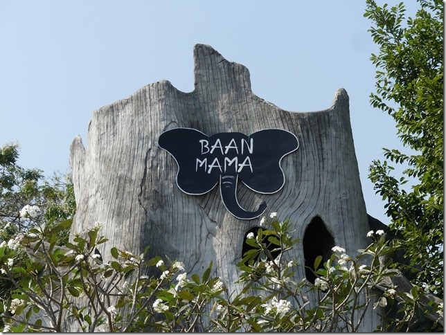 Baan Mama - écovolontariat (14)