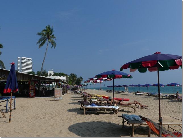 Bivouac plage 3 tree beach (10)
