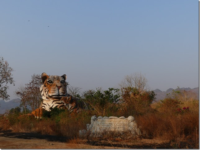 The tiger temple (37)