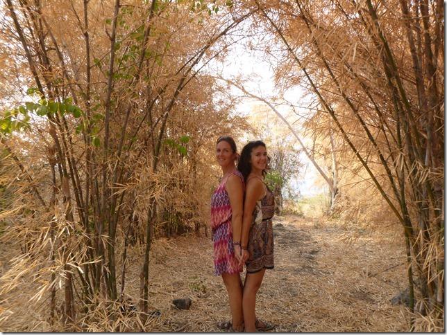 Forest park - Khao Nang Phanthurat (16)