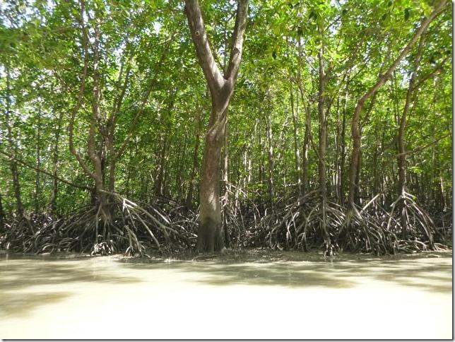 Phang Nga - sortie bateau parc national (119)