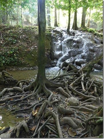 Phang Nga Waterfall (10)