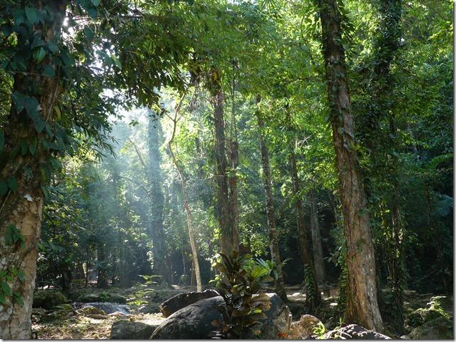 Phang Nga Waterfall (14)