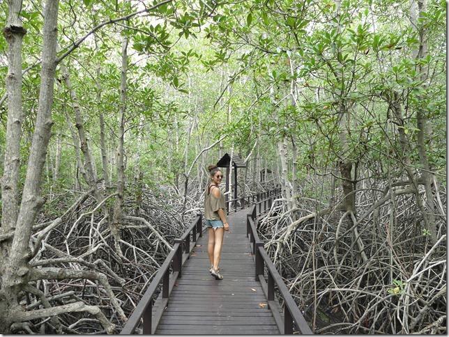Pran Buri forest park (11)