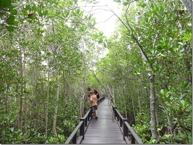 Pran Buri forest park (22)