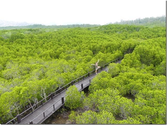Pran Buri forest park (25)