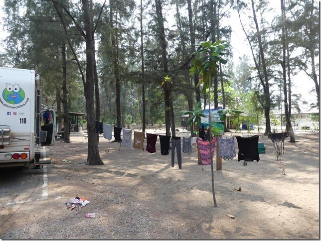 Pran Buri forest park (2)