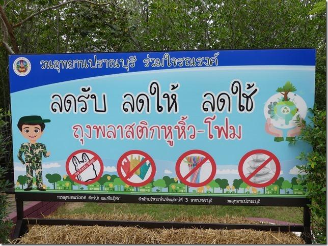 Pran Buri forest park (41)