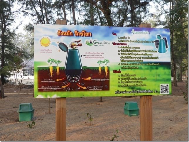 Pran Buri forest park (4)