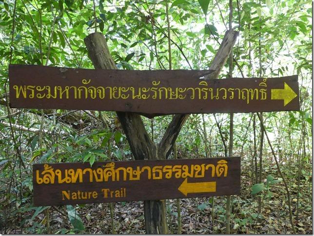 Ranong - Trail sources chaudes (2)