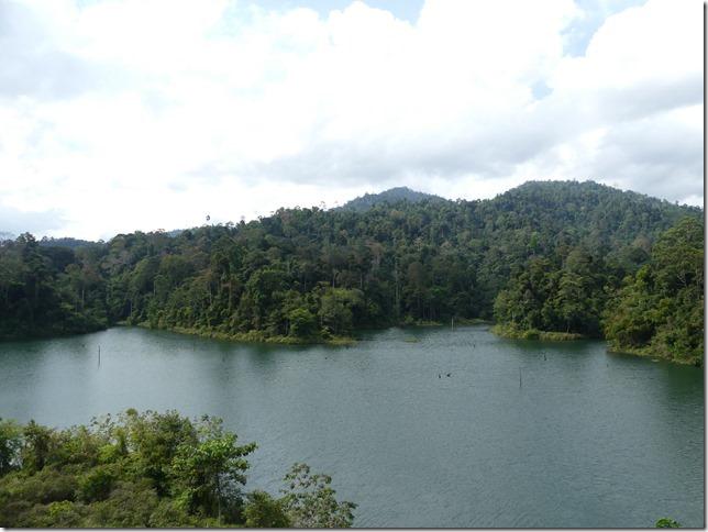 Bivouac lac - jungle (1)
