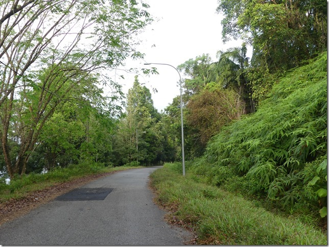 Bivouac lac - jungle (9)