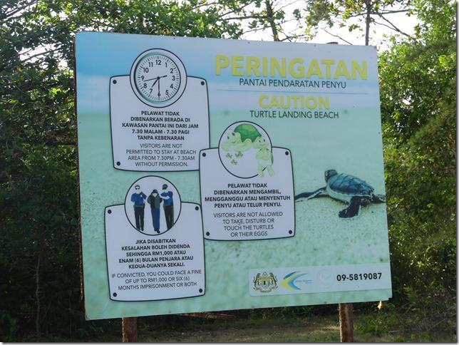 Bivouac nord Cherating - sanctuaire tortues (7)