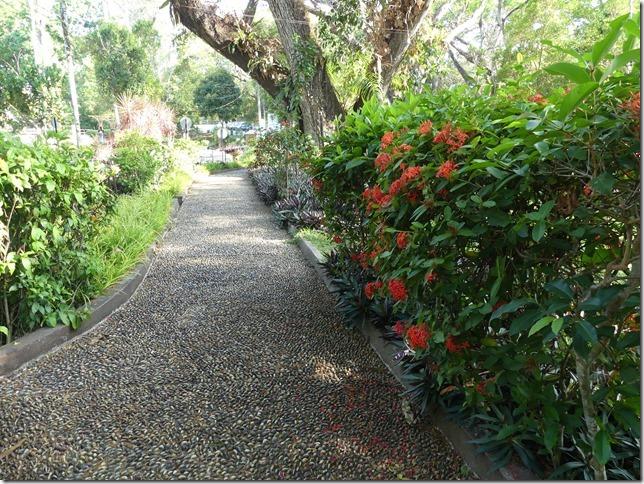 Penang Island - City Park (53)