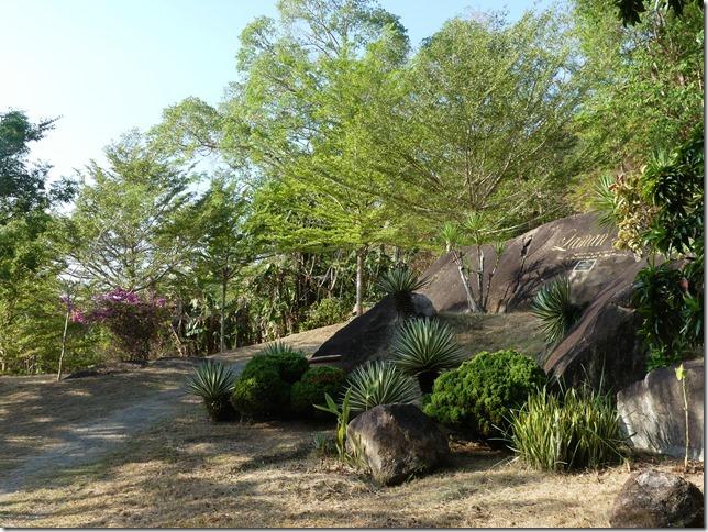 Penang Island - City Park (61)