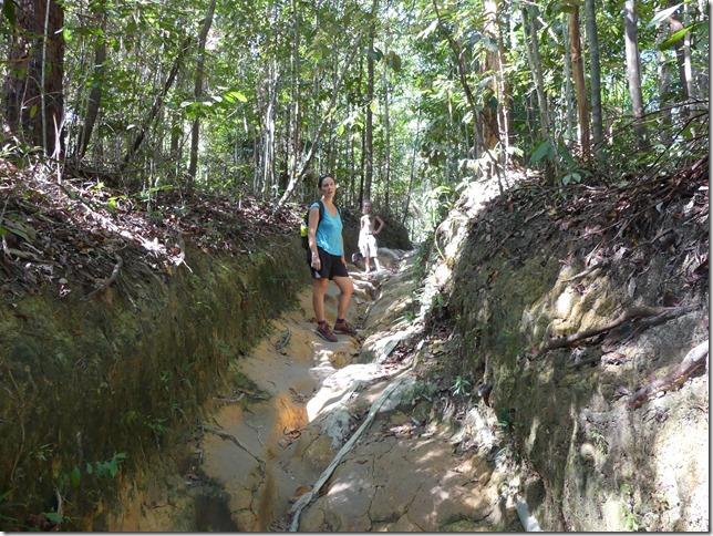 Penang National Park (11)
