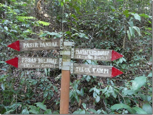 Penang National Park (15)