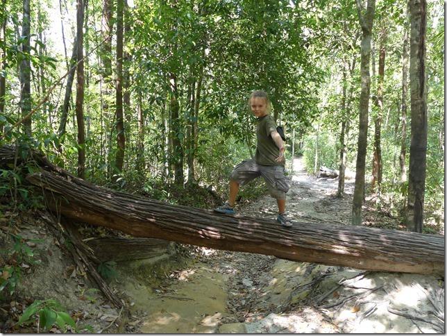 Penang National Park (24)